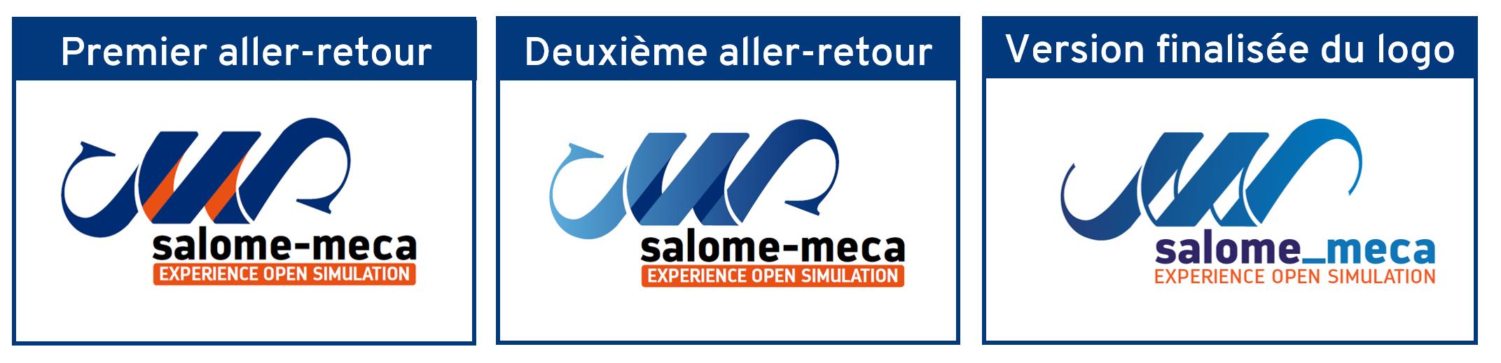 Les différentes versions du logo salome_meca