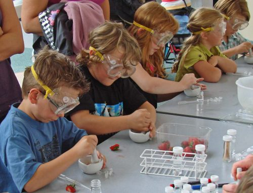 Science : animer un atelier pour enfants
