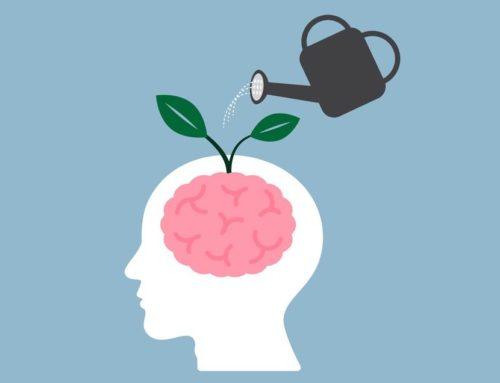 Communication : savoir parler au cerveau