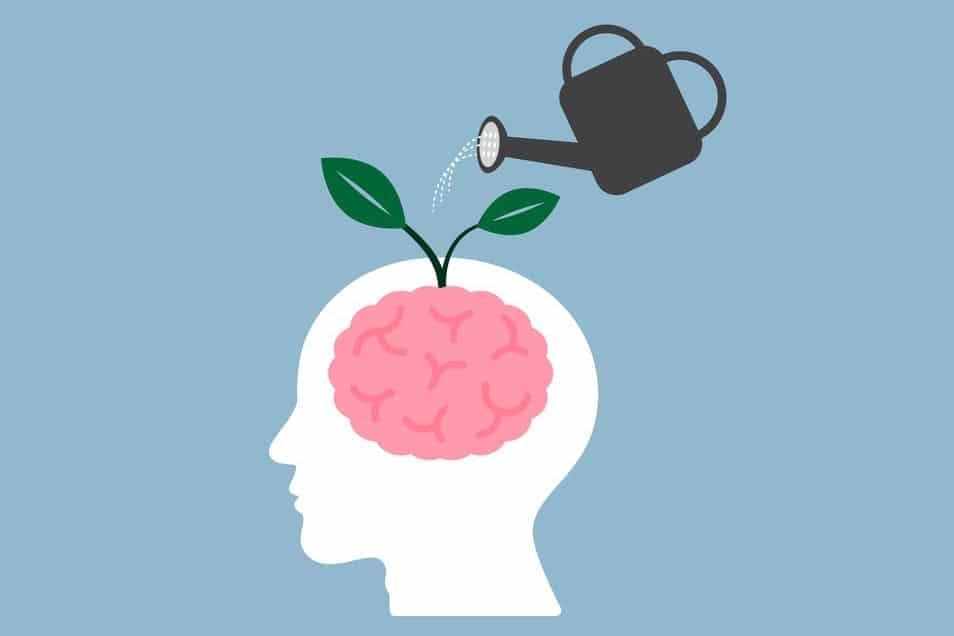 savoir parler au cerveau