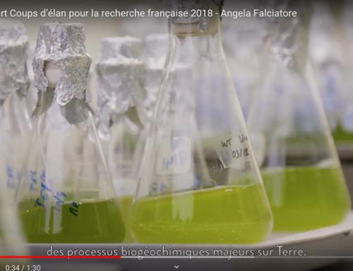 Vidéo scientifique : et si vous vous lanciez ?
