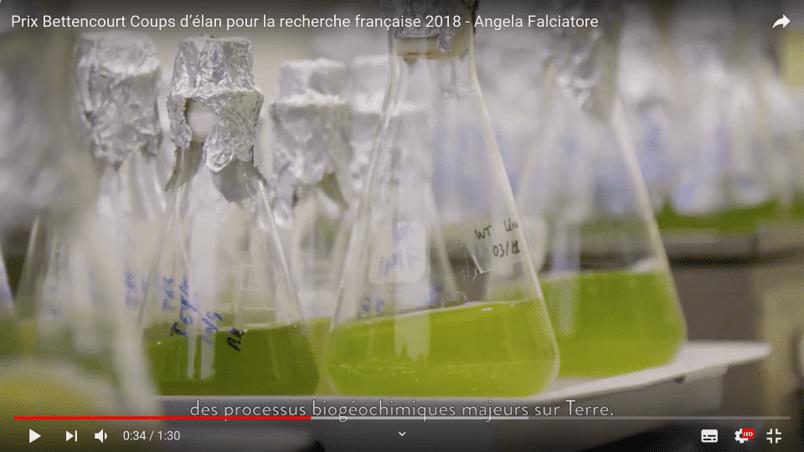 Vidéo de science